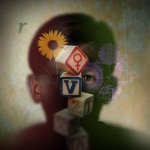 psikoloji-ile-ilgili-bazi-bilgiler